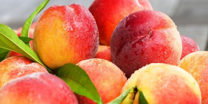The Amazing Health Benefits of Peaches