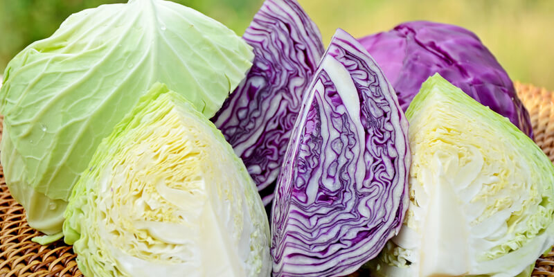 5 Reasons You Should Add Cabbage to Your Diet